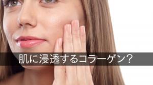 肌に浸透するコラーゲン?