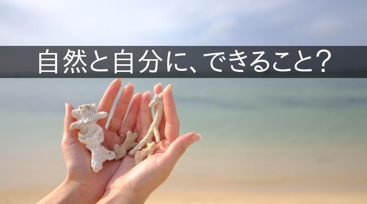 サンゴ 日焼け止め ハワイ パラオ